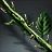 Icon item quest110.png