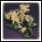 Dried flowers icon.png
