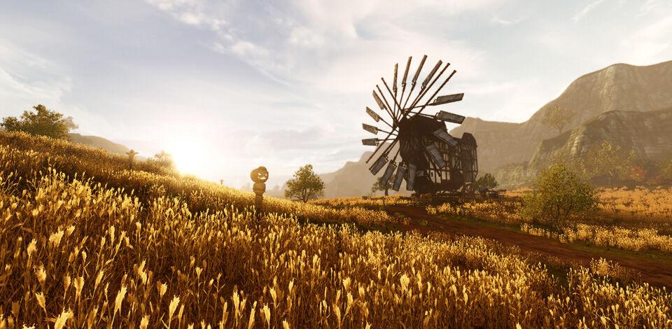 Golden plains.jpg