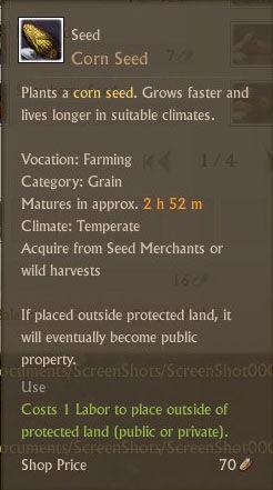 Corn Seed Txt.jpg