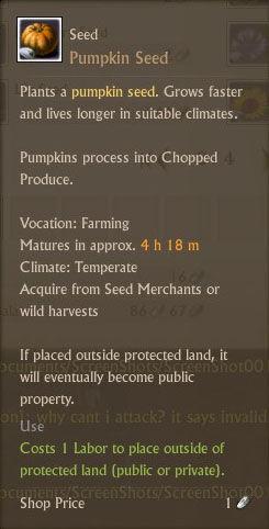 Pumpkin Seed Txt.jpg