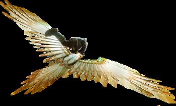 Glider2.png