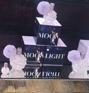 Moonlight by Ariana Grande box
