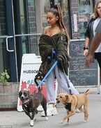 Ariana Grande with Toulouse and Myron in New York September 23 (4)
