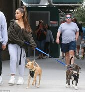 Ariana Grande with Toulouse and Myron in New York September 23 (3)