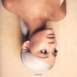 Sweetener Artwork.jpg