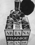 FrankieFragrancePackaging