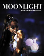MoonlightFragrancePoster