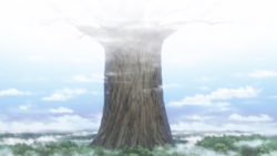 Sea of Trees (Anime).png