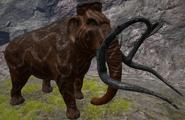 Mammoth ASIG
