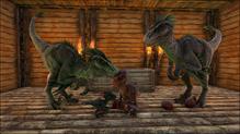 Raptor large01
