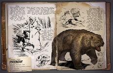 Свирепый медведь