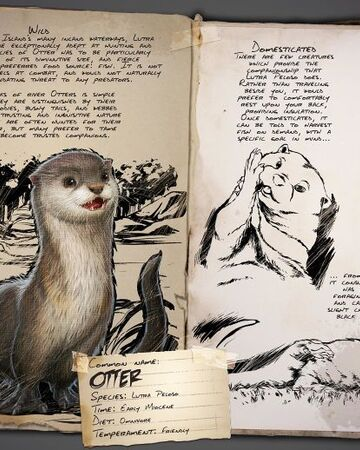 Otter Ark Survival Evolved Wiki Fandom I was very precise at my dot placements on this one! otter ark survival evolved wiki fandom