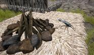 DragonflySize
