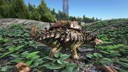 Ankylosaurus04