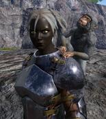Monkey on shoulder
