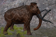 Mammoth Size