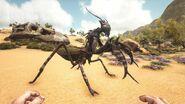 Mantis ASIG