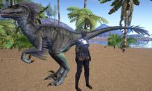 RaptorSize