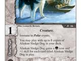 Alaskan Sledge Dog