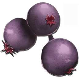 Ark food food mejoberry official ark survival evolved wiki forumfinder Image collections