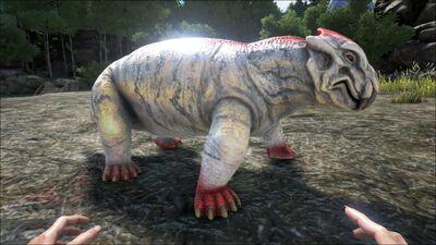 Lystrosaurus PaintRegion5.jpg