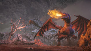 Dragon Arena.jpg