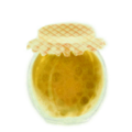 Jam of Amarberry (Primitive Plus).png