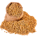 Soybean Seed (Primitive Plus).png