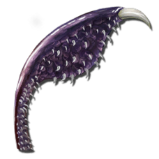 Tusoteuthis Tentacle.png