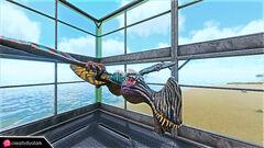 Chibi-Tropeognathus in game.jpg