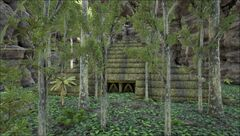 Pyramid- Jungle.jpg