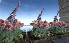 Plant-x.jpg