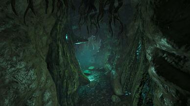 Darkwood Tunnel (Genesis Part 1).jpg