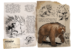 Dossier Dire Bear.png