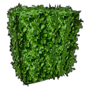 Box Hedge (Mobile).png