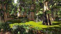 The Wetlands (Crystal Isles).jpg