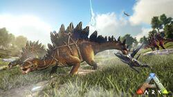 Stegosaurus TLC.jpg