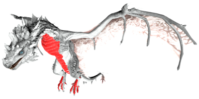 Tropical Crystal Wyvern PaintRegion2.png