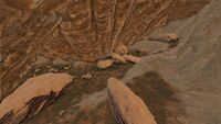Hidden Springs Cave (Ragnarok).jpg