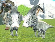 Pair-o-Saurs Chibi in game.jpg