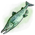 Old Smelly Fish Skin (Mobile).png