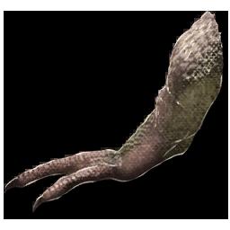 Tyrannosaurus_Arm.png