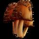 Rare Mushroom.png