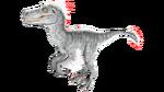 Raptor PaintRegion1.png