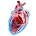 Mod Ark Eternal Dino Heart.png