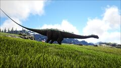 Diplodocus on a Plateau.jpg