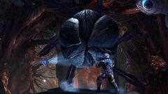 Genesis Part 2 image 6.jpg