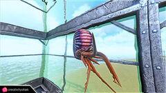 Chibi-Ammonite in game.jpg
