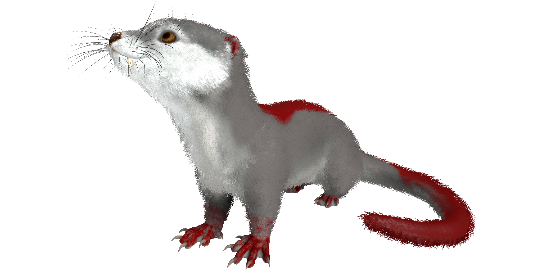 Colors Name Otter Official Ark Survival Evolved Wiki